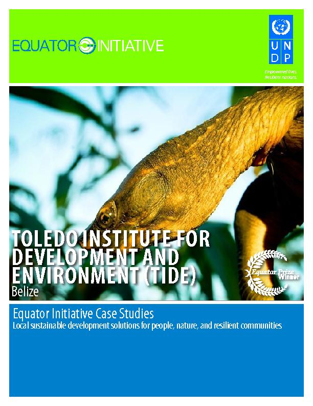 TOLEDO INSTITUTE FOR DEVELOPMENT AND ENVIRONMENT (TIDE)
