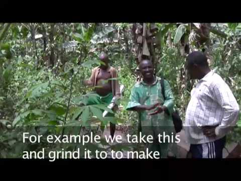 Cameroon - Baka People: Facing changes in African forests