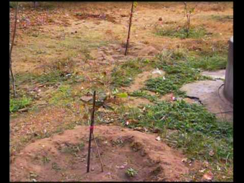 Sri Lanka – Toxic and Chamical Contaminated Water and Clean-up (UNTV)