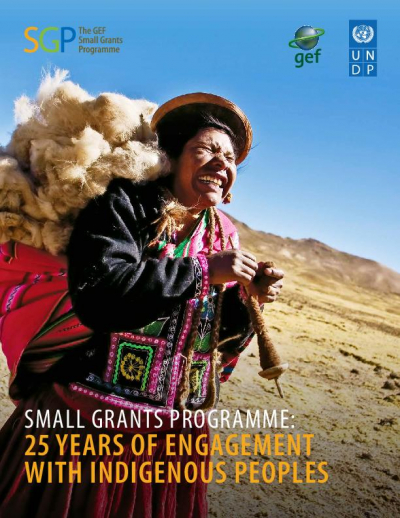 Small Grants Programme: 25 Years of Engagement with Indigenous Peoples