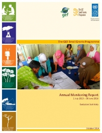 Small Grants Programme Annual Monitoring Report 2013-2014 - Executive Summary